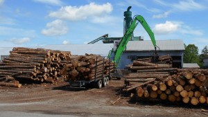 The new SENNEBOGEN 830 M-T has taken over the duties of two tandem log trucks fitted with loading booms, resulting in improved safety as well as throughput.