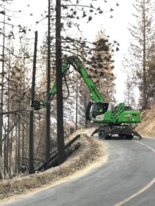 With its reach, the operator can cut down burned out trees on the slope and lay them down safely.